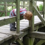 Luther-Pooh-sticks