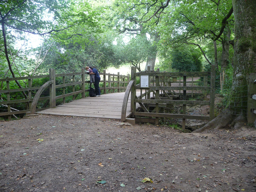 Luther-and-Mummy-pooh-sticks