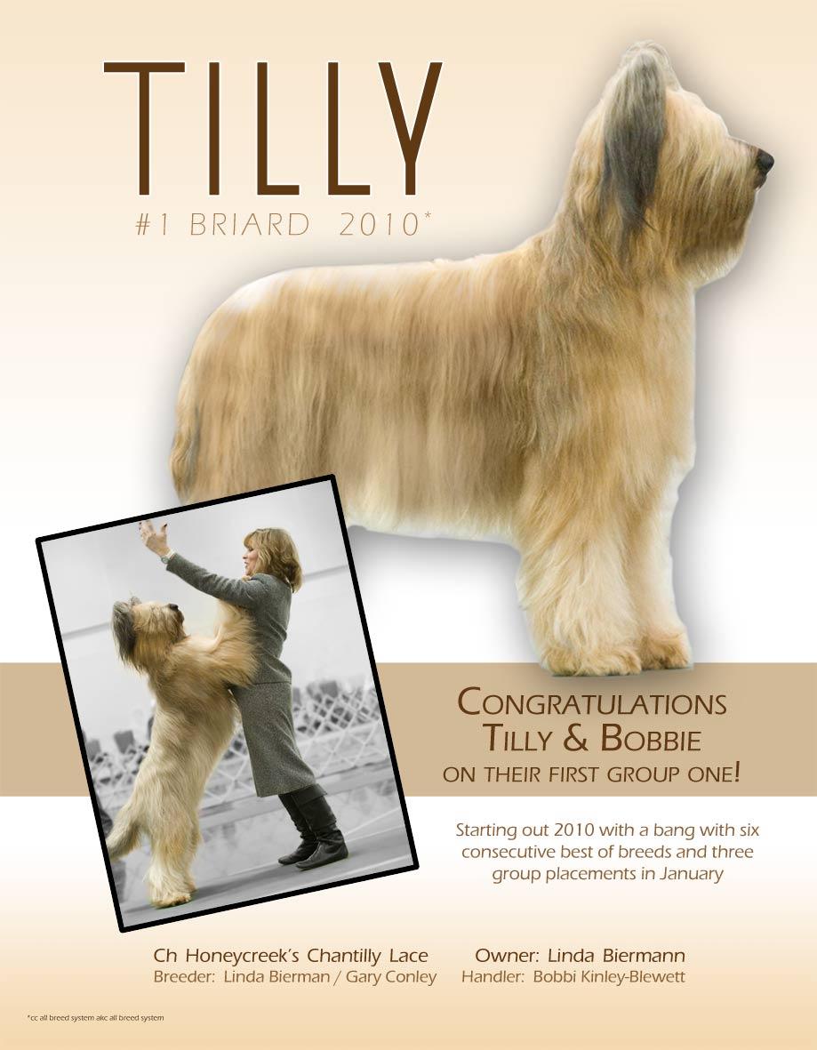 Tilly's-ad-copy-3