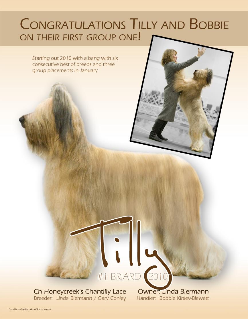 Tilly's-ad-copy-5b