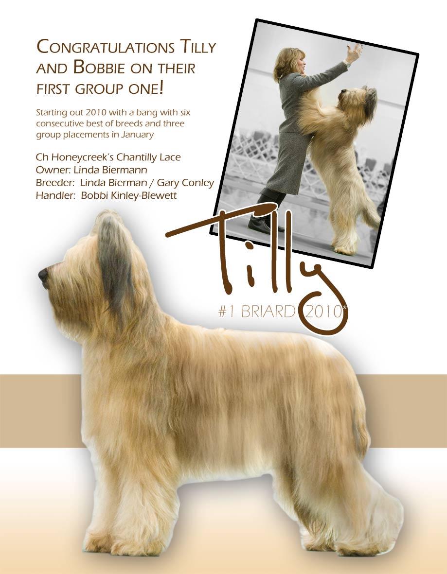 Tilly's-ad-copy