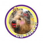tilly badge 10