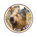 tilly badge 11