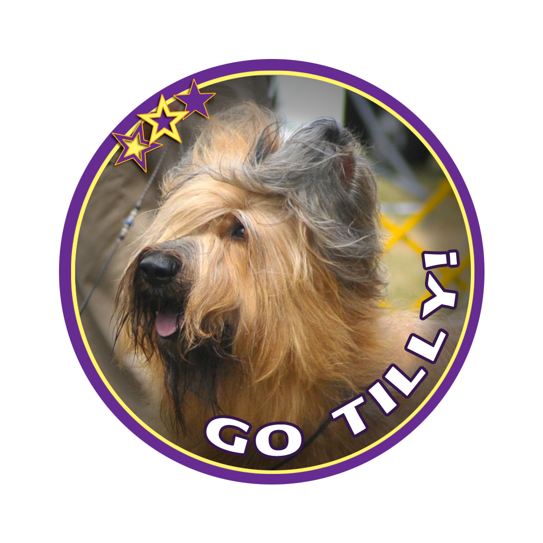 tilly badge 12