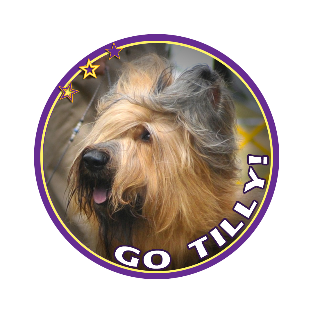 tilly badge 15