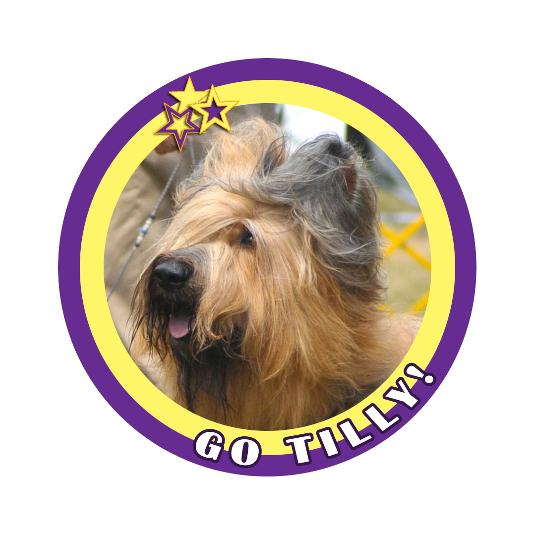 tilly badge 7