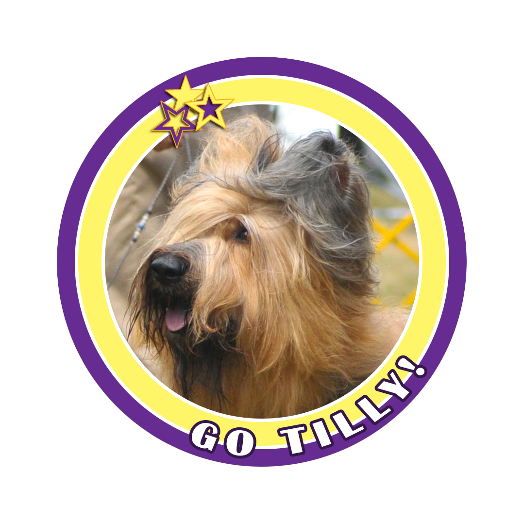 tilly badge 8