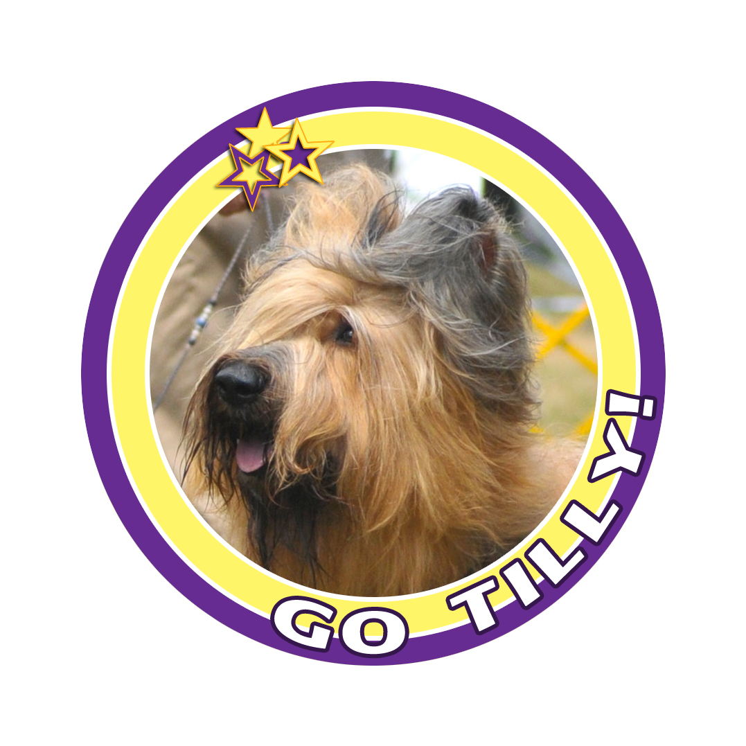 tilly badge 9