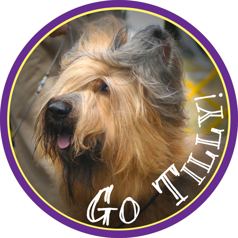 tilly badge1