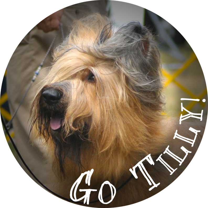 tilly badge2