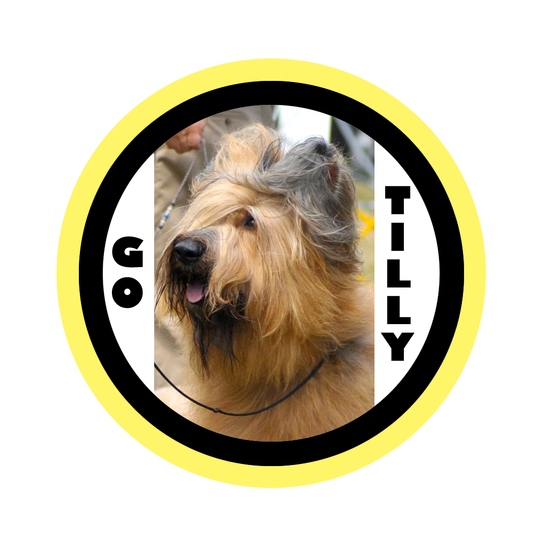 tilly badge4